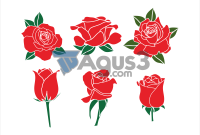 Red Rose (Bunga Mawar Merah) Vector Format CDR, PNG